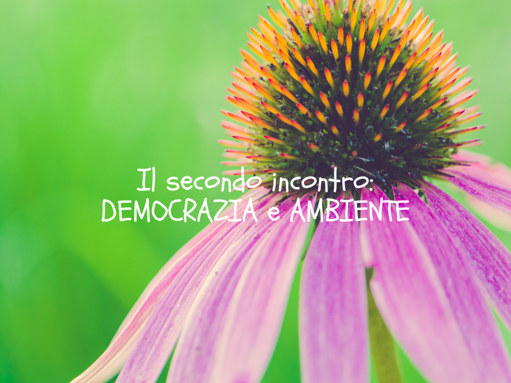 Politici Per Caso: il nesso tra democrazia e ambiente – 08/05/2020